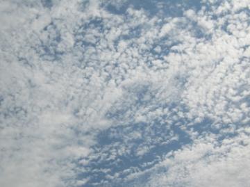 medium_06_09_06-1.jpg