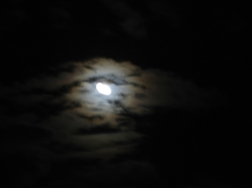 medium_fullmoon-05_12_06.jpg