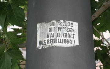 medium_rebell.jpg