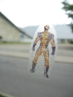 medium_superman-1.jpg