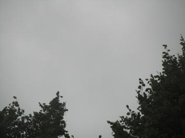 24_09_10-1.jpg