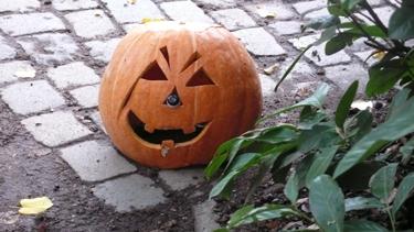 citrouille,halloween,michel jeannès