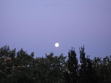 full-moon09-2008.jpg
