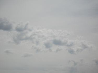 21_05_09-1.jpg
