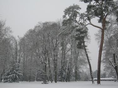 Snow-Metz-25.jpg