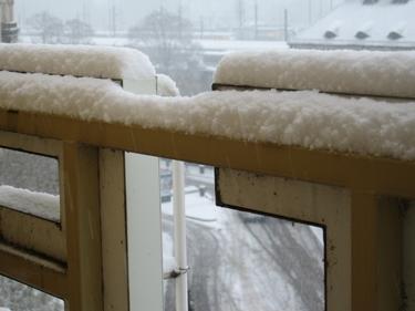 Snow-Metz-3.jpg