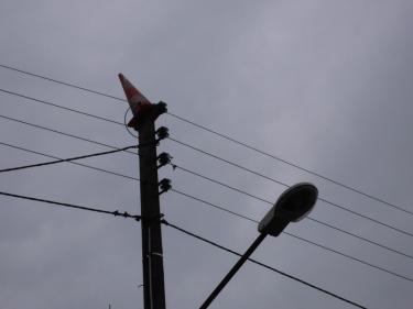 cône de chantier,cône de lübeck,oiseau,pylone,électricité