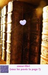 coeur-libri-.jpg