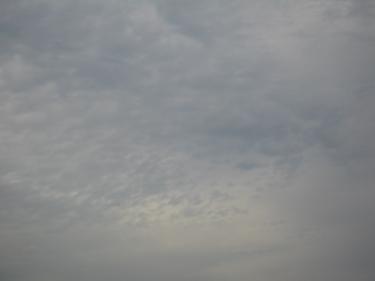 25_11_09-2.jpg