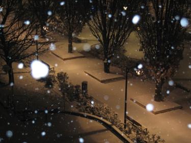 Snow2010-2.jpg