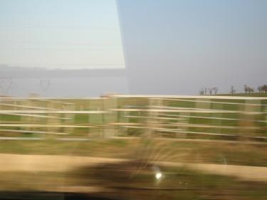 train31_03_09-6.jpg