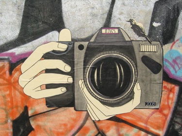 oiseau-camera.jpg