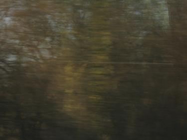 train31_03_09-7.jpg