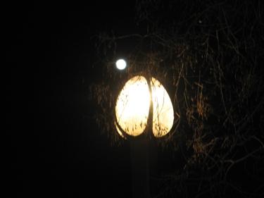 lune-turgescente.jpg
