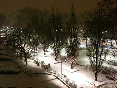 Snow2010-3.jpg