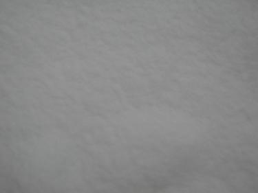 Snow-Metz-15.jpg