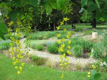 jardin-botanique-avril-7.jpg