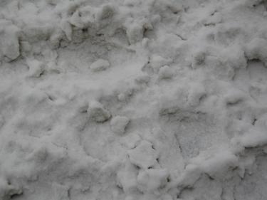 Snow-Metz-16.jpg