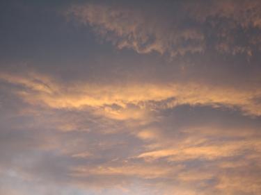 29_07_09-1.jpg