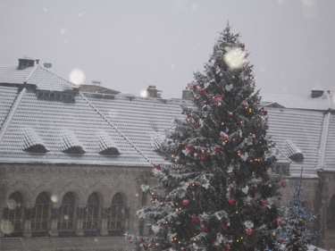 Snow-Metz-5.jpg