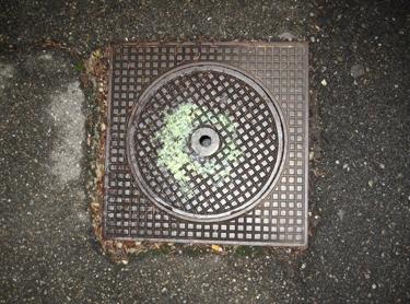 pavement-29.jpg