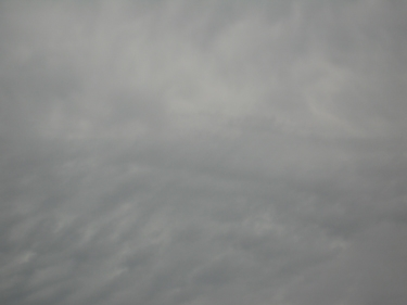 30_07_08-2.jpg