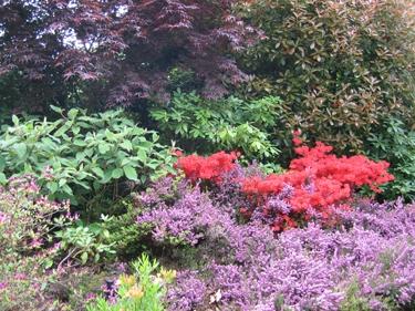 jardin-botanique-avril-4.jpg