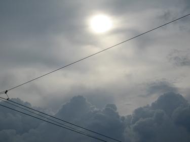 21_04_09.jpg