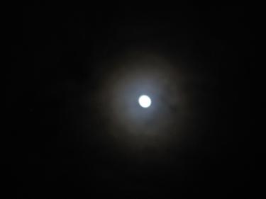 Lune-29_01_10-1.jpg