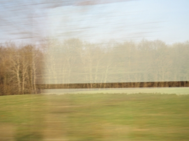 train31_03_09-4.jpg