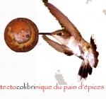 colibri8.jpg