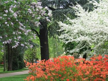 jardin-botanique-avril-5.jpg