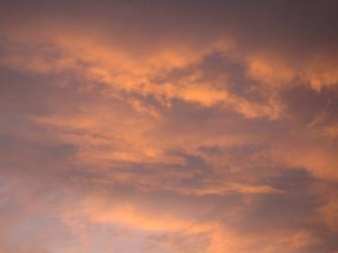 29_07_09-2.jpg