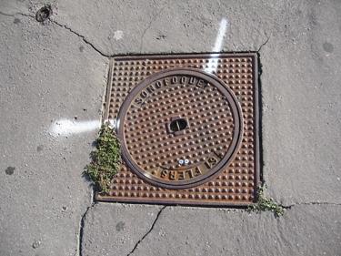 pavement-31.jpg