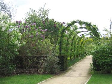 jardin-botanique-avril-6.jpg