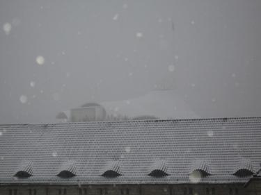 Snow-Metz-6.jpg