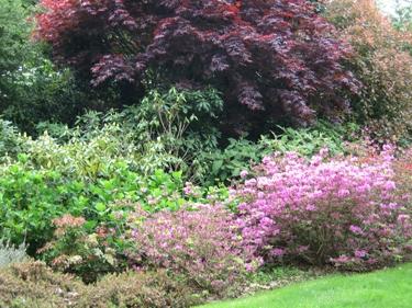 jardin-botanique-avril-3.jpg
