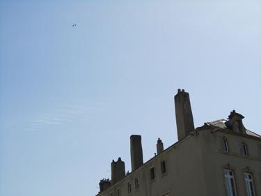oiseau,ciel bleu