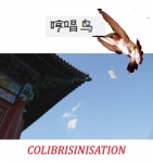 COLIBRISINISATION.jpg