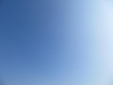ciel,ciel bleu,crocus,printemps
