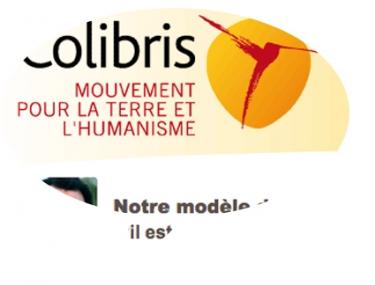 KLbullecolibrisrabbhi.jpg