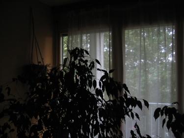 jour-sombre.jpg