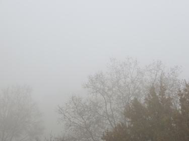 ciel,nuages,brume,pollution,smog