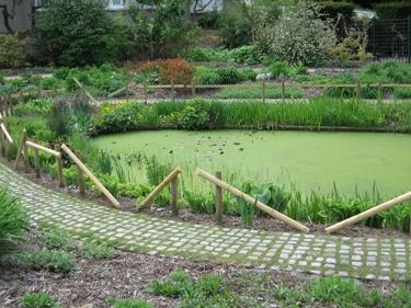 jardin-botanique-avril-8.jpg