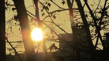 coucher de soleil,soleil,ciel,nuages