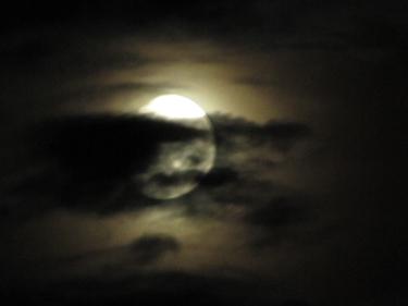 moon-21_07_10-2.jpg