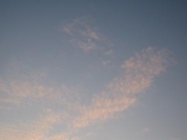 14_08_09.jpg