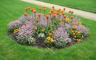 jardin-botanique-avril-15.jpg
