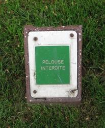 pelouse-interdite.jpg