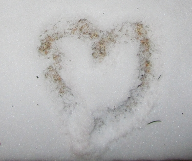 heart-of-snow.jpg